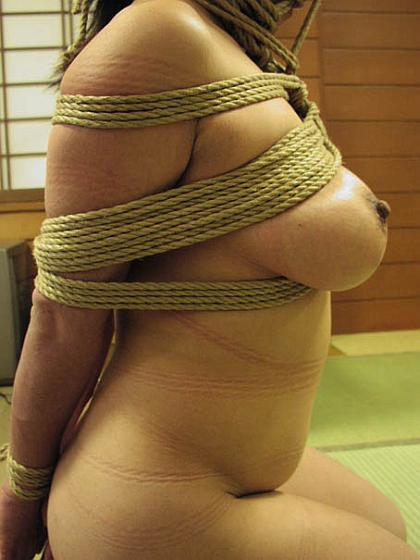Japanese breast rope bondage consider